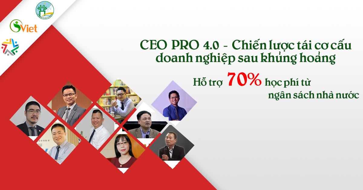 CEO PRO 4.0 – CHIẾN LƯỢC TÁI CƠ CẤU CỦA DOANH NGHIỆP SAU KHỦNG HOẢNG